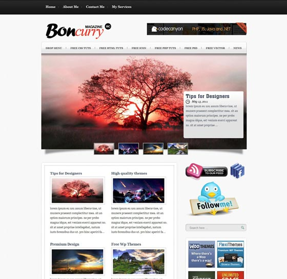 Тема Bon Curry для wordpress