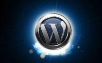 Как убрать category в wordpress