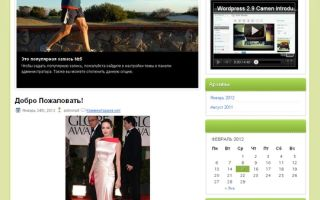 Тема HealthyLife для wordpress