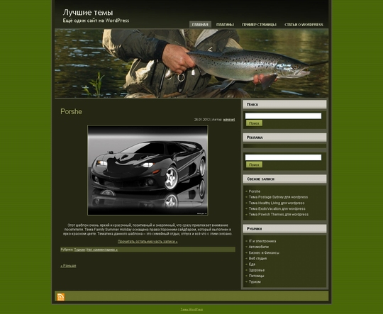 Тема Salmon Fishing для wordpress